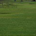 Golf Attersee 2