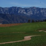 Golf Attersee