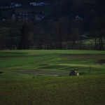 Golf Attersee 8